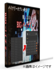 バイナリーオプション攻略セット・パッケージBIG.PNG